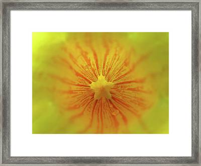 Breathe Framed Print by Juergen Roth