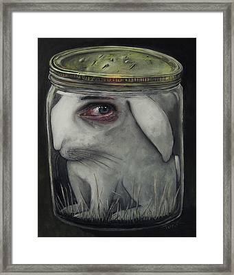 Breathing Holes Framed Print by Joe Turk