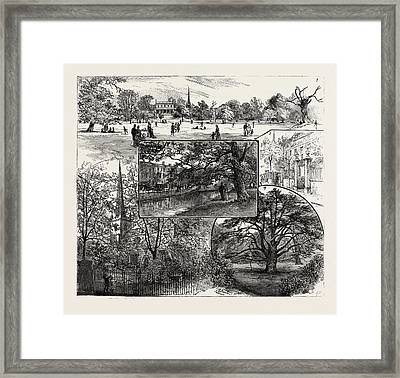 Breathing Spaces For London, Clissold Park Framed Print by English School