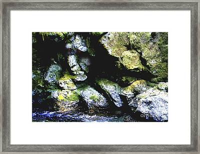 Breathing... Waiting...   Framed Print by Rich Collins