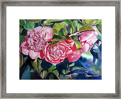 Breathtaking Blossoms Framed Print by Mohamed Hirji
