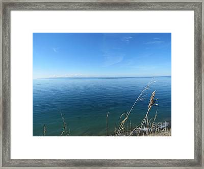 Breeze In Blue Framed Print