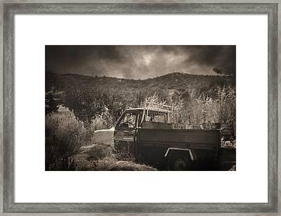 Breeze Framed Print by Taylan Apukovska