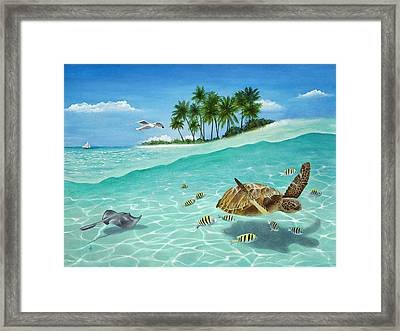 Breezin Framed Print by Carolyn Steele