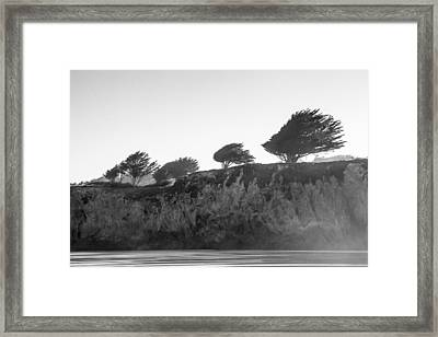 Breezy Framed Print by Takeshi Okada