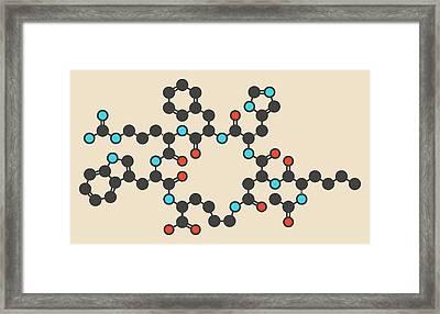 Bremelanotide Molecule Framed Print