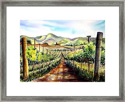 Brenda's Vineyard In Lompoc California  Framed Print by Candy Yu