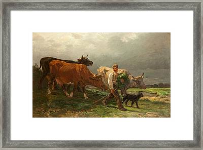 Breton Lad With Cattle Framed Print by Julius Caesar Ibbetson