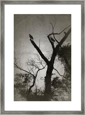 Brevity Of Life - No.4414v Framed Print