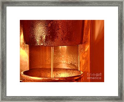 Brew Framed Print by Olivier Le Queinec