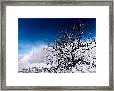 Brewing Sand Storm Framed Print by Julian Cook