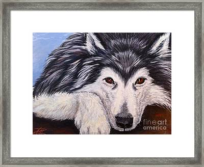 Brewser Two Framed Print