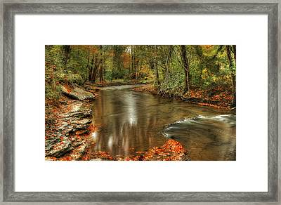 Briar Creek Framed Print