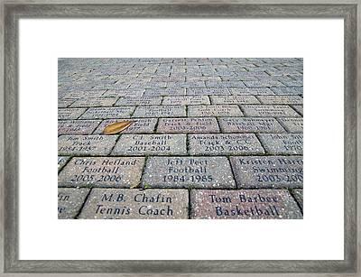 Bricks At Ben Hill Griffin Stadium Framed Print