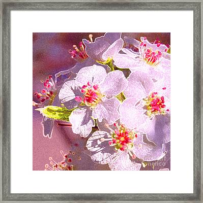 Bridal Bouquet By Jrr Framed Print