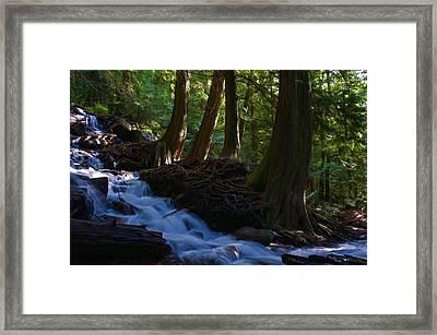 Bridal Veil Falls I Framed Print