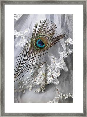 Bridal Veil Framed Print
