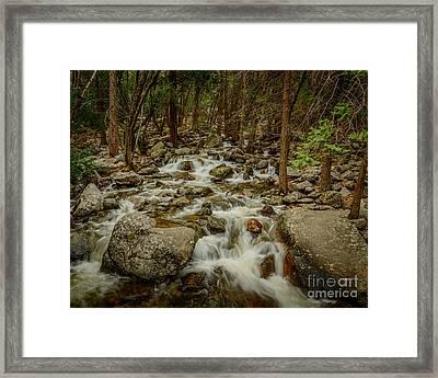 Bridalveil Creek In Yosemite Framed Print
