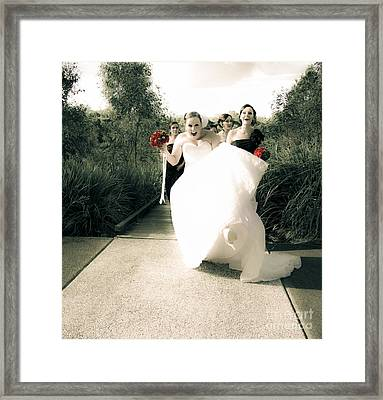 Brides Delight Framed Print