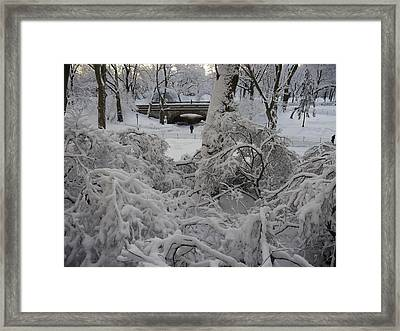 Bridge And Snow Covered Trees Framed Print by Winifred Butler