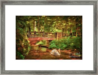 Bridge And Swan Framed Print