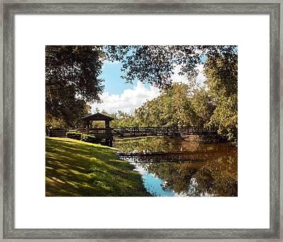 Bridge At Sawgrass Park Framed Print by Ginny Schmidt