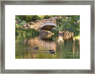 Framed Print featuring the photograph Bridge At Stow Lake by Kate Brown