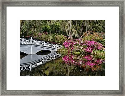 Bridge Crossing Pond Springtime Azalea Framed Print