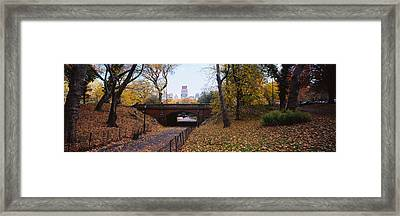 Bridge In A Park, Central Park Framed Print by Panoramic Images