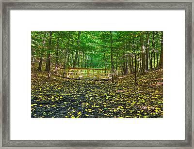 Bridge In Gosnell Big Woods Framed Print by Tim Buisman