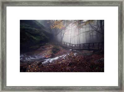 Bridge In Mystical Forest. Framed Print