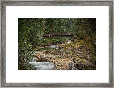 Bridge In The Woods Framed Print