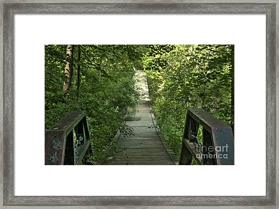 Framed Print featuring the photograph Bridge Into The Woods by Jim Lepard