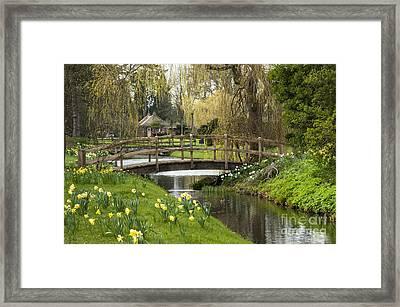 Bridge Of Delight Framed Print by Donald Davis
