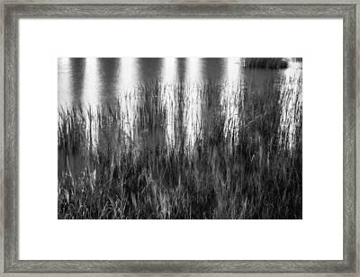 Bridge Of Lions Reflections St Augustine Florida Painted Bw   Framed Print by Rich Franco