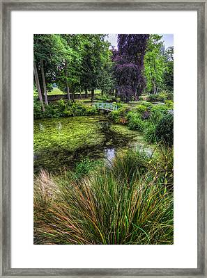 Bridge Over The Pond Framed Print by Ian Mitchell