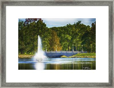 Bridge Over Troubled Waters Framed Print by Skip Tribby
