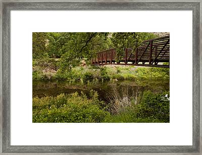 Bridge Over Wetlands Framed Print