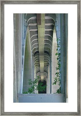 Bridge Spine Framed Print by Bruce Carpenter