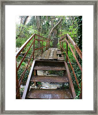 Framed Print featuring the photograph Bridge To Simiez by Jon Emery