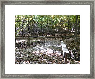 Bridge To The Forest Deep Framed Print