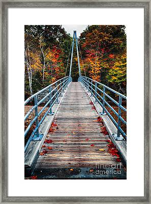 Bridge To The Nature Framed Print by George Oze