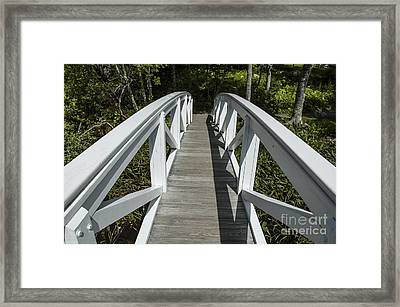 Bridge To Woods Framed Print