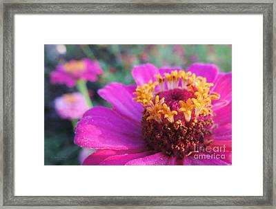 Bridgets Bloom Framed Print
