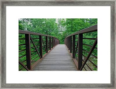 Bridging The Gap Framed Print