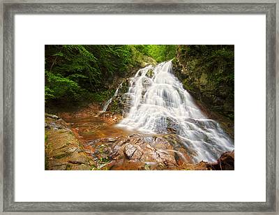 Bridle Veil Falls Framed Print