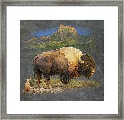 Brief Altercation - Bison And Prairie Dog Framed Print
