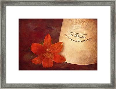 Briefly Beautiful Framed Print by Maria Angelica Maira