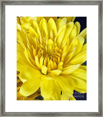 Bright As The Sun Framed Print by Cedric Hampton