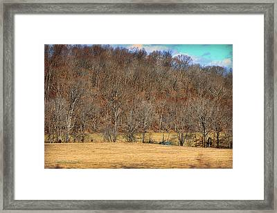 Bright Blue Shed Framed Print by Paulette B Wright